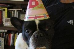 Beau Birthday